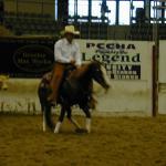 Joe Montana on his cutting horse