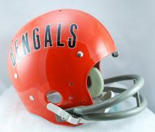 Bengal Helmet