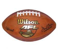 Indoor Arena Game Football 2002-2003 by Wilson