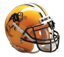 North Dakota State Bison Full Size Authentic Helmet by Schutt