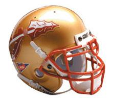 Florida State Seminoles Replica Full Size Helmet by Schutt Image