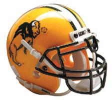 North Dakota State Bison Replica Full Size Helmet by Schutt Image