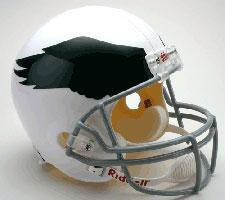 Philadelphia Eagles Helmet 1969-73 Throwback Deluxe Replica Full Size by Riddell