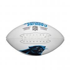 Panthers team logo football