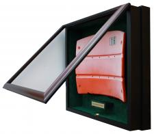 Display Case for Seatback