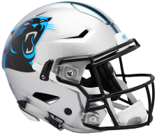 Panthers Speed Flex Helmets
