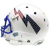 Air Force Football Helmet Back