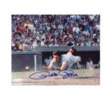 Pete Rose Cincinnati Reds 8x10 #269 Autographed Photo